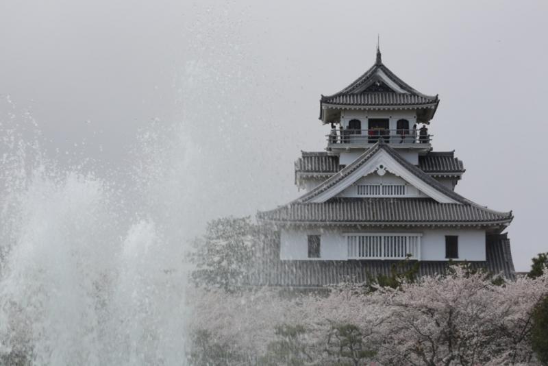 京都新聞フォトコンテスト 水も滴る。。