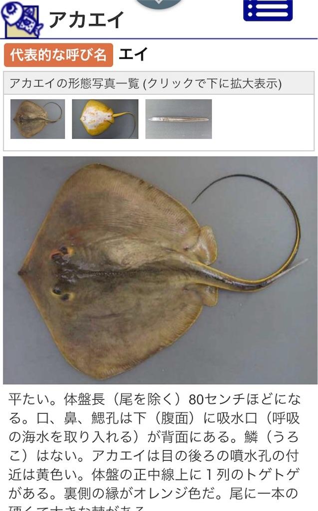 f:id:ueki_suisan:20180605204851j:image