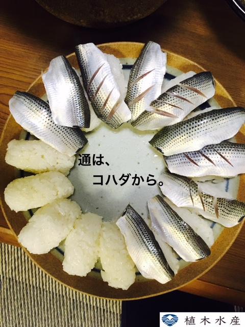 f:id:ueki_suisan:20180609131150j:plain