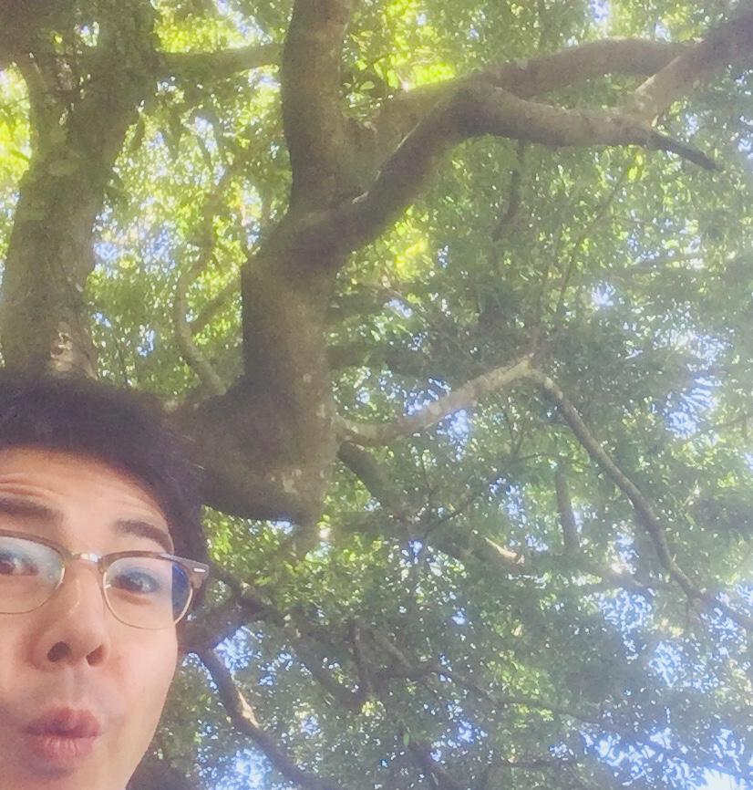 f:id:ueki_suisan:20180910181922j:plain