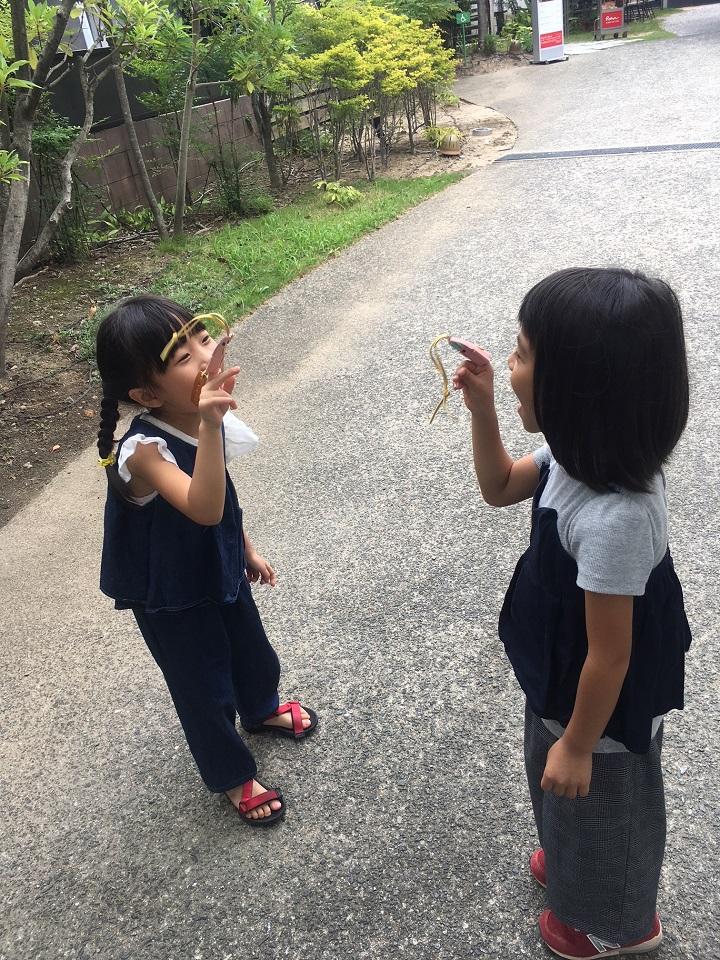 f:id:ueki_suisan:20180913172416j:plain