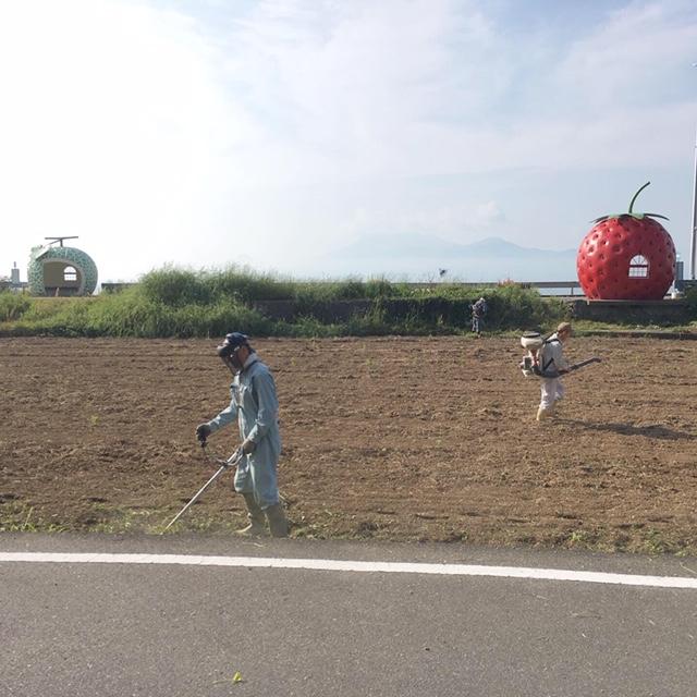 f:id:ueki_suisan:20190511162855j:plain