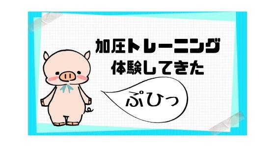 f:id:uemoto_mariko:20181120173501j:plain