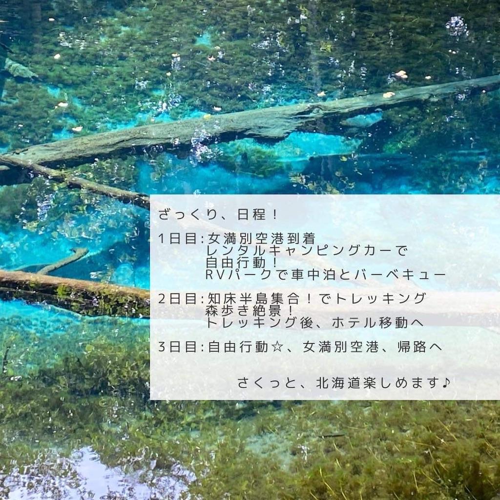 f:id:ueneusarumidori71:20210613231216j:image