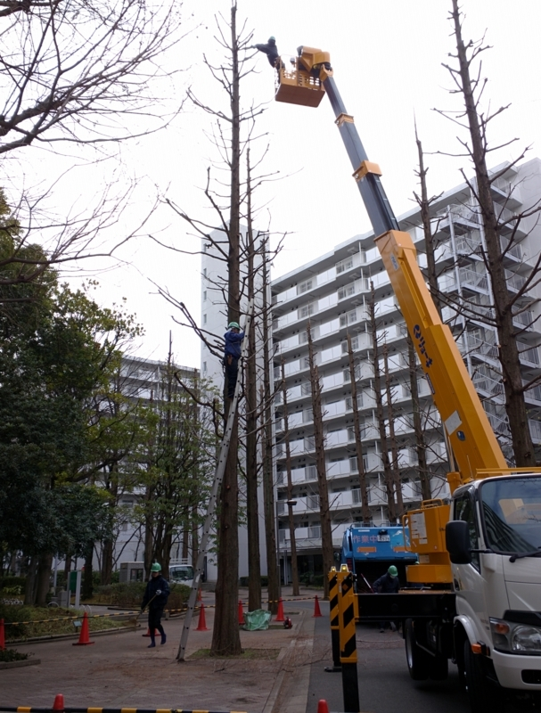 https://cdn-ak.f.st-hatena.com/images/fotolife/u/ueno_neco/20180315/20180315003845.jpg