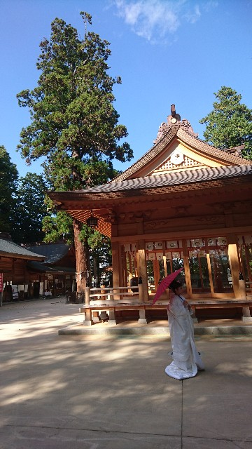f:id:uenokoeda:20171011133713j:image