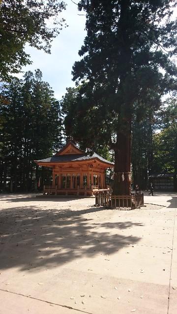f:id:uenokoeda:20171011133736j:image