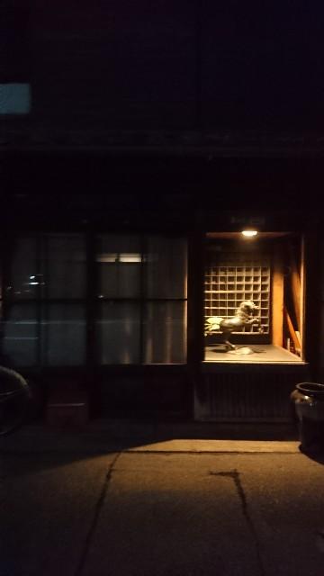 f:id:uenokoeda:20171216055504j:image
