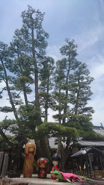 f:id:uenokoeda:20171220105117j:image