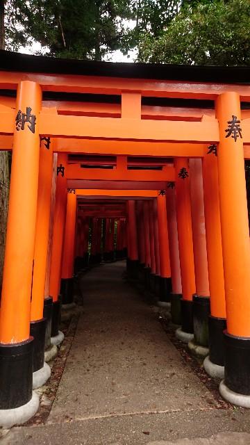 f:id:uenokoeda:20180412073910j:image