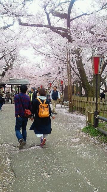 f:id:uenokoeda:20180520083606j:image