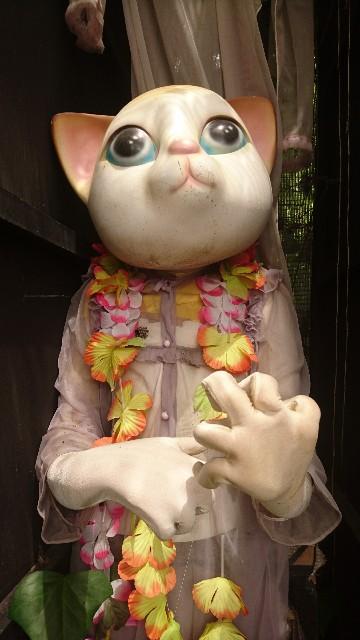 f:id:uenokoeda:20180628232806j:image