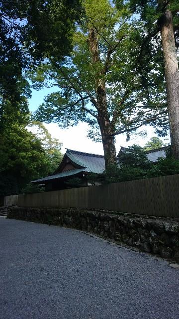 f:id:uenokoeda:20181204212637j:image