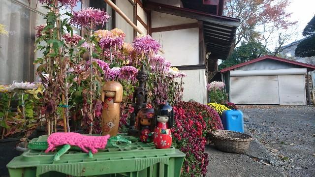 f:id:uenokoeda:20181216222935j:image