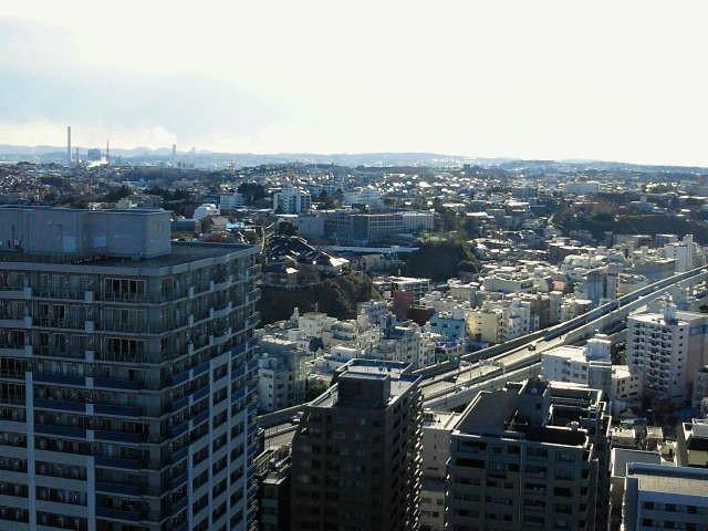 f:id:uenokoeda:20190320103009j:image