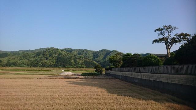 f:id:uenokoeda:20190507074853j:image