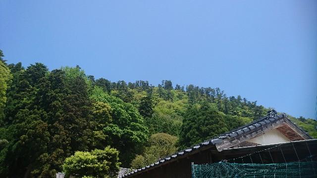 f:id:uenokoeda:20190507075743j:image