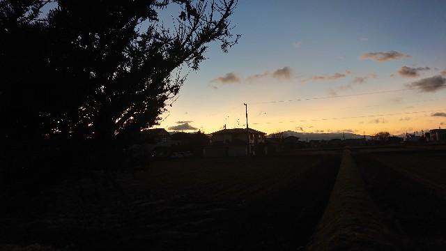 f:id:uenokoeda:20200324204858j:image