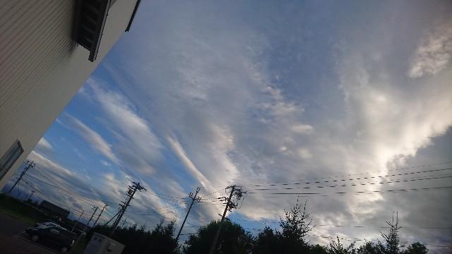 f:id:uenokoeda:20200324205118j:image