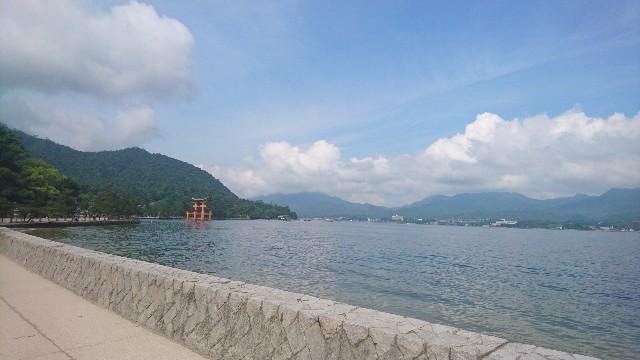 f:id:uenokoeda:20200324205347j:image