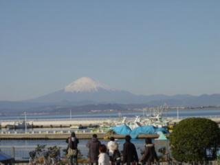 f:id:uenoshuichi:20090101100402j:image