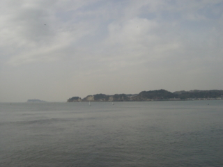 f:id:uenoshuichi:20090215122632j:image