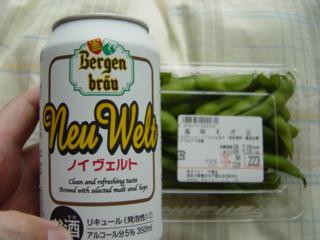 f:id:uenoshuichi:20090718145739j:image