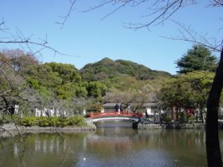 f:id:uenoshuichi:20091103102029j:image