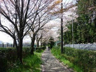 f:id:uenoshuichi:20100410101304j:image
