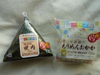 f:id:uenoshuichi:20100426163210j:image