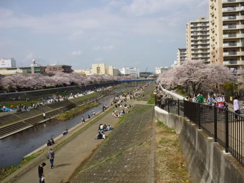f:id:uenoshuichi:20110410141937j:image