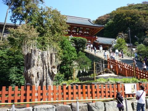 f:id:uenoshuichi:20110924102253j:image