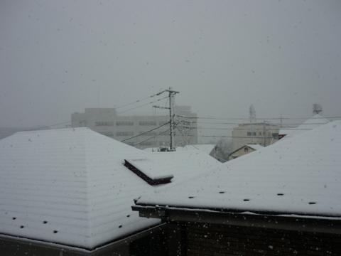 f:id:uenoshuichi:20120229092715j:image