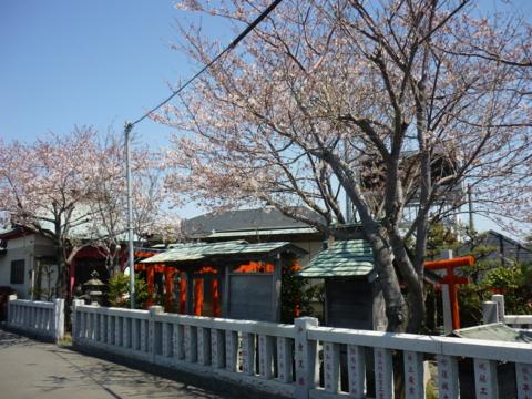 f:id:uenoshuichi:20120409114431j:image