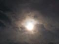 金環日食・・・のはず。