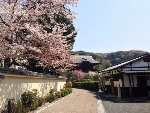 f:id:uenoshuichi:20140410104331j:image