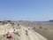 湘南の海辺
