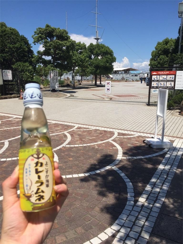 f:id:uenotakumi:20170726143139j:image
