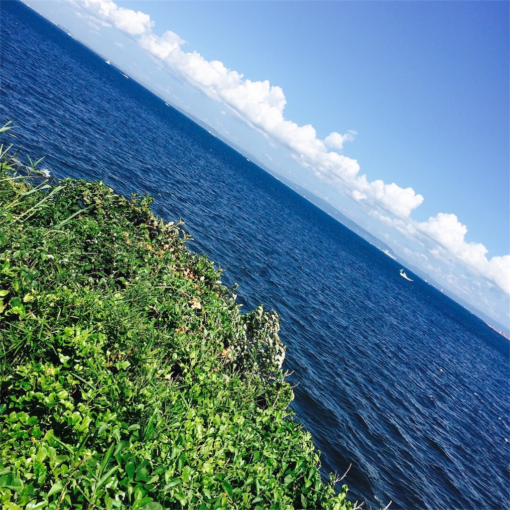 f:id:uenotakumi:20170727115344j:image