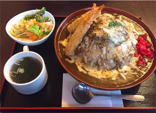 f:id:uenotakumi:20180204182015j:image
