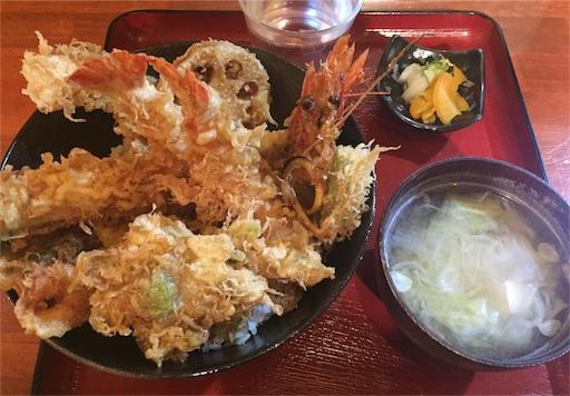 f:id:uenotakumi:20180205191352j:image