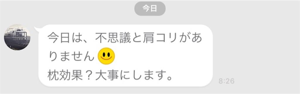 f:id:uenotakumi:20180620123157j:image