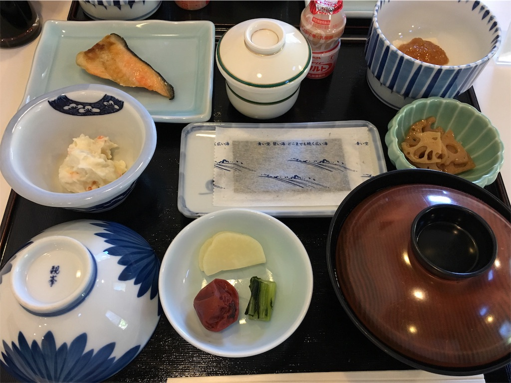 f:id:uenotakumi:20180828153653j:image