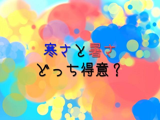 f:id:uenoyou111:20180502214317j:plain