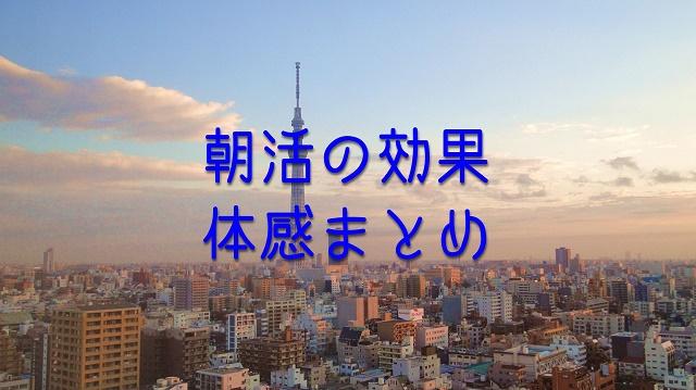 f:id:uenoyou111:20180527031617j:plain