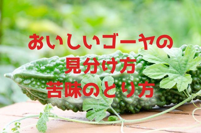 f:id:uenoyou111:20180530053932j:plain