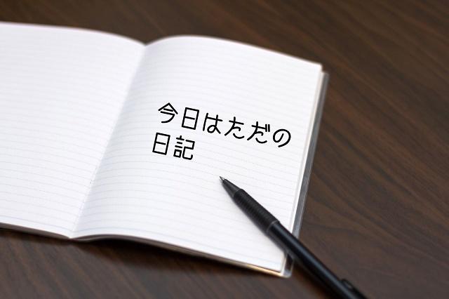 f:id:uenoyou111:20180608054820j:plain
