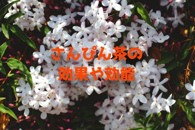 f:id:uenoyou111:20180612053357j:plain