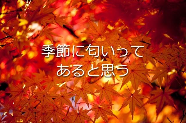 f:id:uenoyou111:20180701194352j:plain