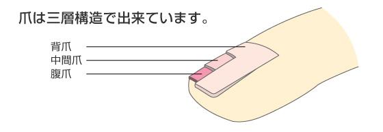 f:id:uenoyou111:20180704215800j:plain
